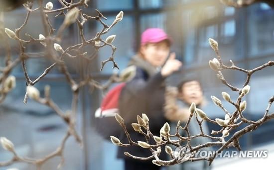 전국 큰 추위 없이 온화…미세먼지 '한때 나쁨'